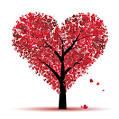 Idée Cadeau pour la St-Valentin